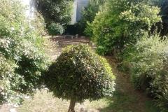 Vista del patio del Coworking Montevideo