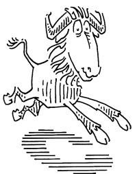 GNU C