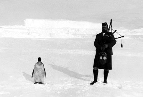 Gilbert Kerr y pingüino